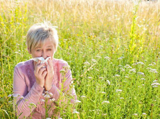 Coronavirus, allergie, asthme : quelles précautions ?