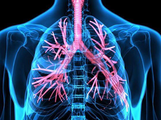 Covid-19 : l'analyse de poumons de patients décédés livre des résultats inattendus