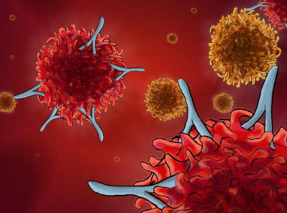 Coronavirus l'immunité croisée remise en question chez les enfants
