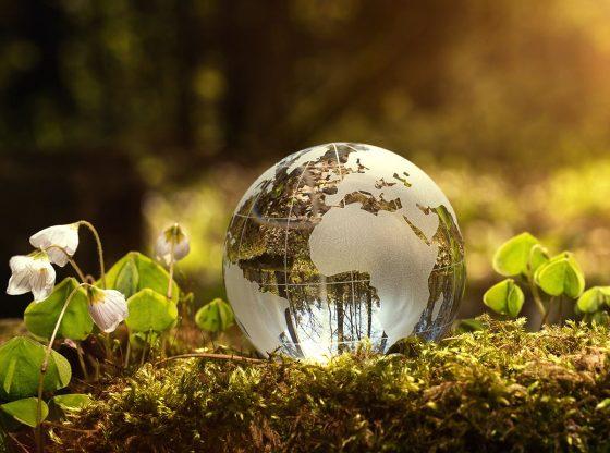 Coronavirus : des effets positifs sur l'environnement ? Un véritable trompe-l'œil